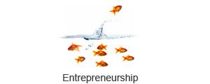 Entrepreneurship - Sussi Bianco 300